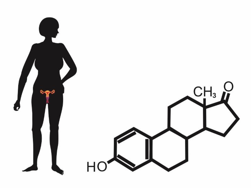 Sex hormone binding globulin pcos