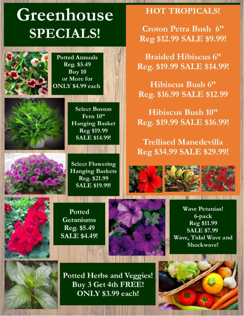 Donzells Flower & Garden Center Inc