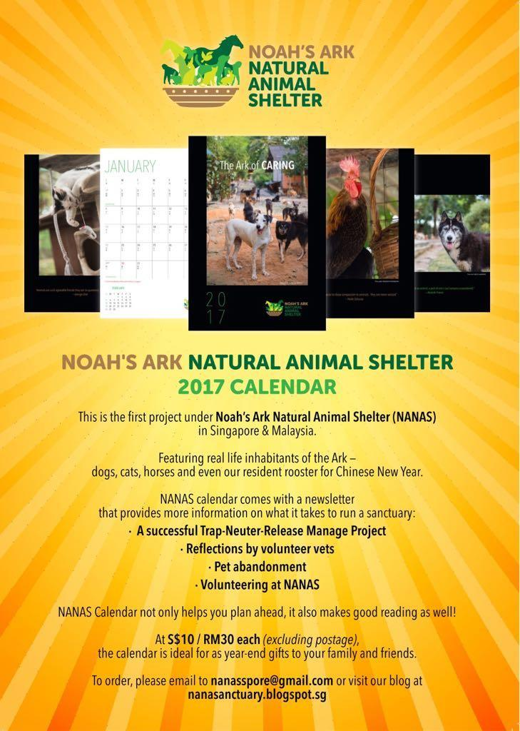 noah's ark animal shelter - 729×1024