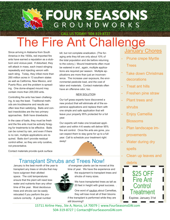 Fire Ants and What to do About Them