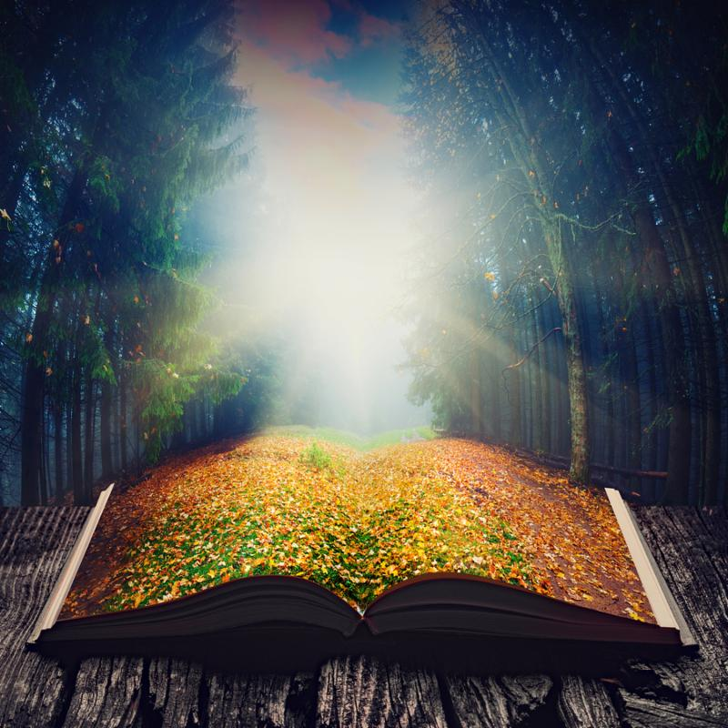 Way through the autumn fairytale forest on the pages of an open magical book. Majestic landscape. Nature and education concept.