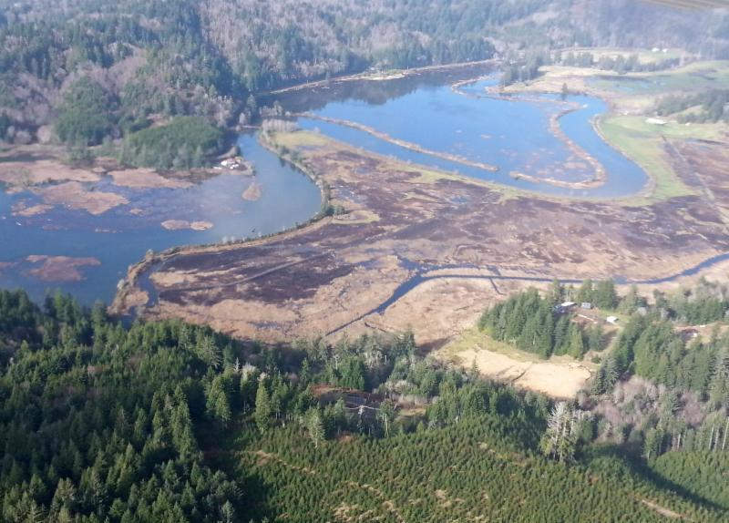 Aerial photo of North Fork Marsh by Roy Lowe, USFWS