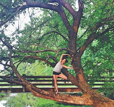 flexibletree.png