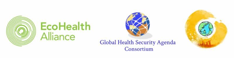 The Global Health Security Agenda Public Amp Private