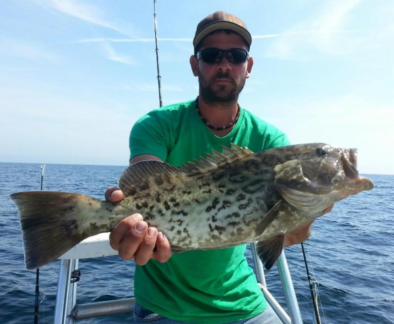 Justin wilson caught and release gag groupers aboard the for Myfwc fishing license