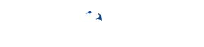 BLUE HAWK Logo