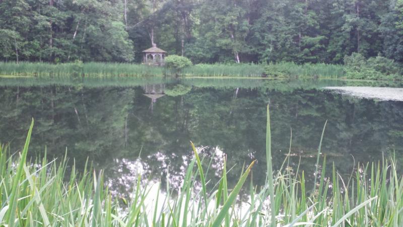 Darling Hill Retreat pond