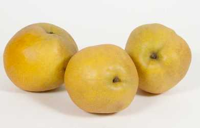 Tawara Pear