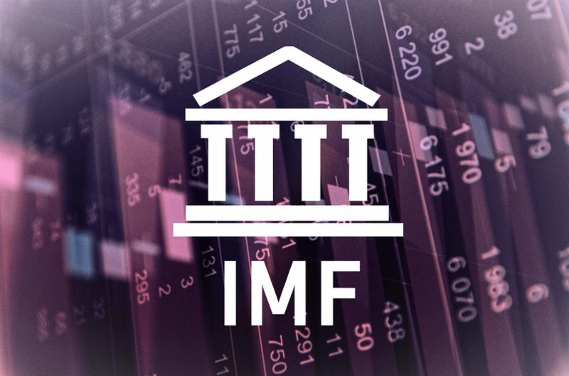 Building icon and inscription  IMF . Financial data on background.