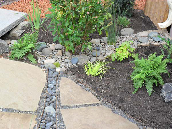 rain garden landscaping