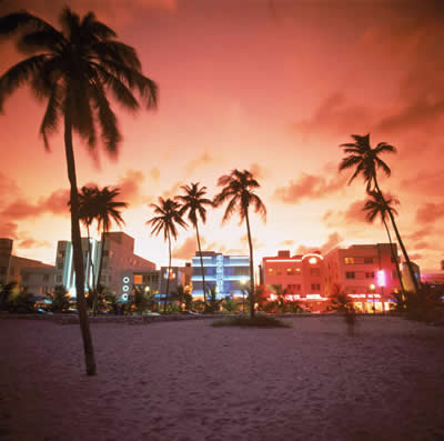 sunset-palms-beach.jpg