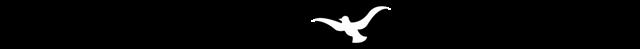 Forever Found Logo