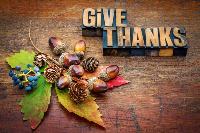 give thanks - Thanksgiving concept - text in letterpress wood type printing blocks with cone_ acorn_ leaf and berries fall decoration