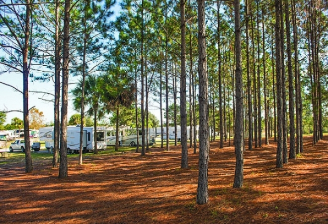 Orlando RV Resort, Clermont, FL