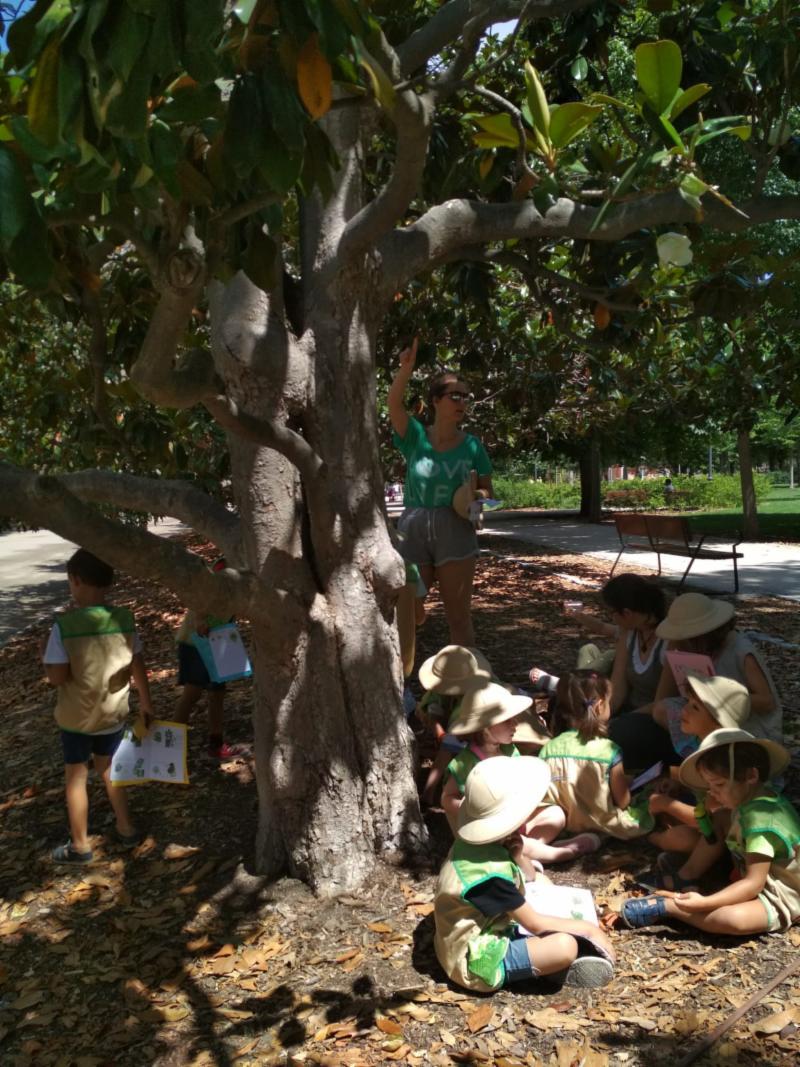 exploradores árboles chalecos
