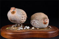 Pair Victorian Hand Carved Partridge Game Bird Statues