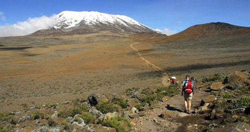 On the slope of Kilimanjaro