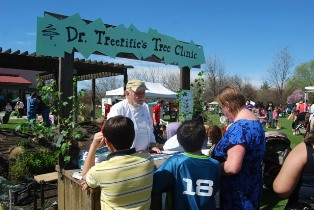 Arbor Festival Dr. Treerific