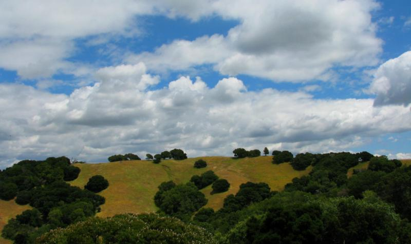 Earthrisse Retreat Center Landscape