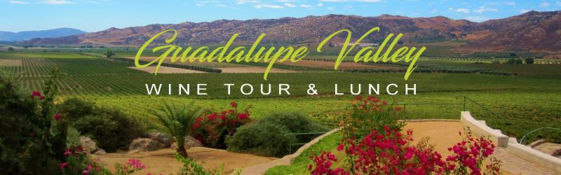 Wine Valley Tour & Lunch