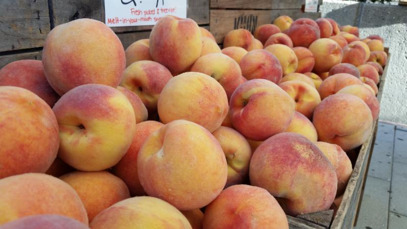 Enewsletter:  Peaches - We still have 'em!  Grapes & Apples too!