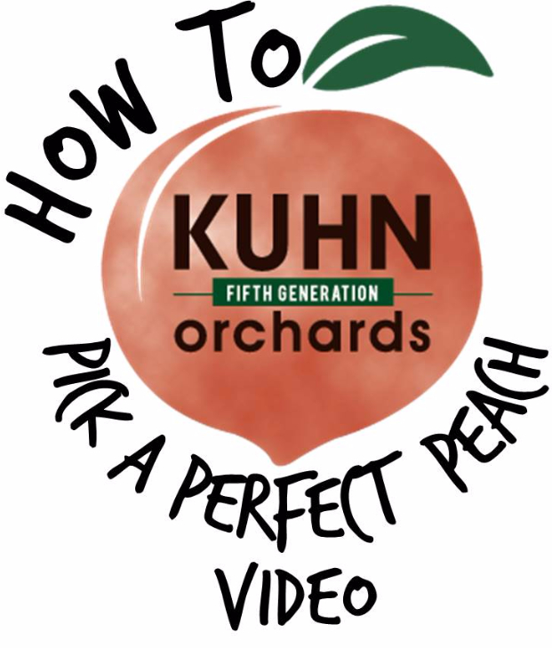 Dave will show you what characteristics you want to look for in your peaches.  He'll also instruct you on how to store them when you get home.