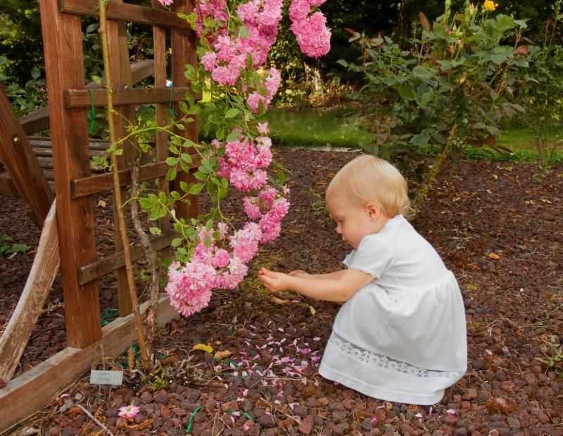 A toddler squats to play with some flowers