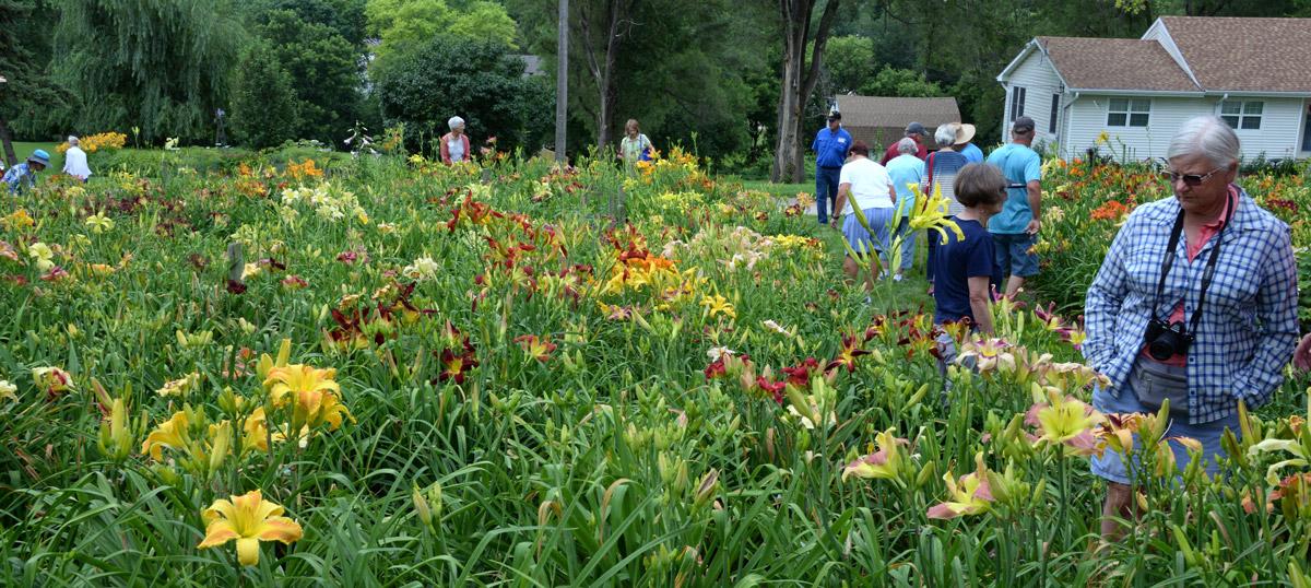 McIntosh Garden in Omaha
