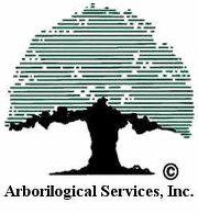 arborilogicallogo
