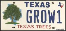 texas tree license plate