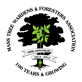 MTWFA 100th logo png