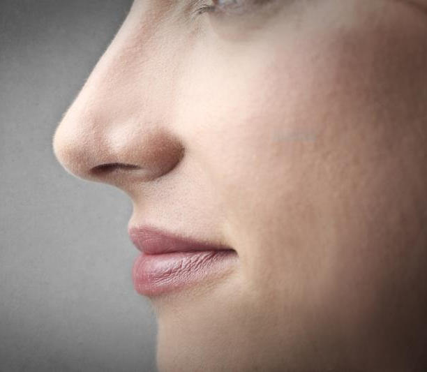 closeup of nose and mouth in profile