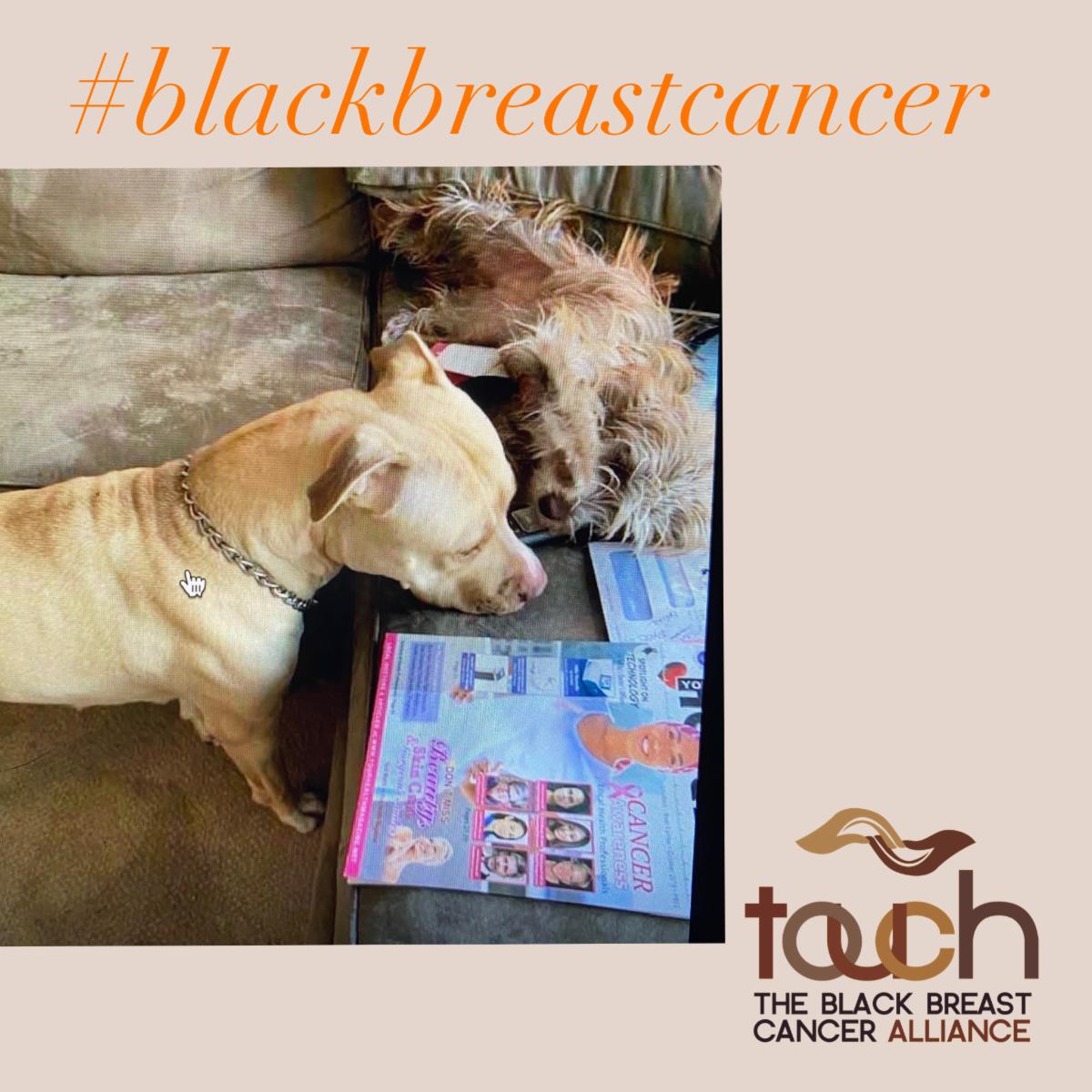#blackbreastcancer