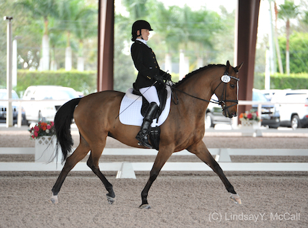 Two-time Paralympian (2008, 2012), two-time WEG athlete (2010, 2014) Rebecca Hart and Danish Warmblood Schroeter's Romani, owned by Rebecca Hart in conjunction with Margaret Duprey, Cherry Knoll Farm, Sycamore Station Equine Division, Barbara Summer, The Ruffolo's, and Will and Sandy Kimmel.