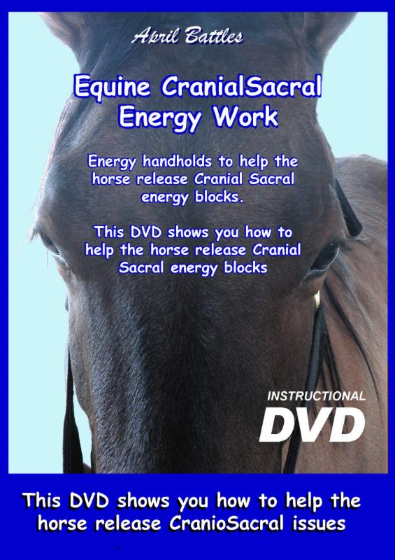 Equine_CranioSacral_Therapy_Energy Work DVD cover
