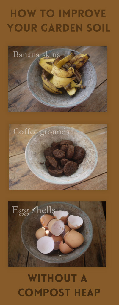 Late Night Coffee Brined Chicken Recipes — Dishmaps
