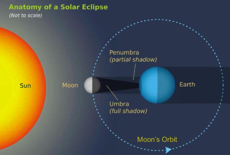 Eclipse Events Around The Park