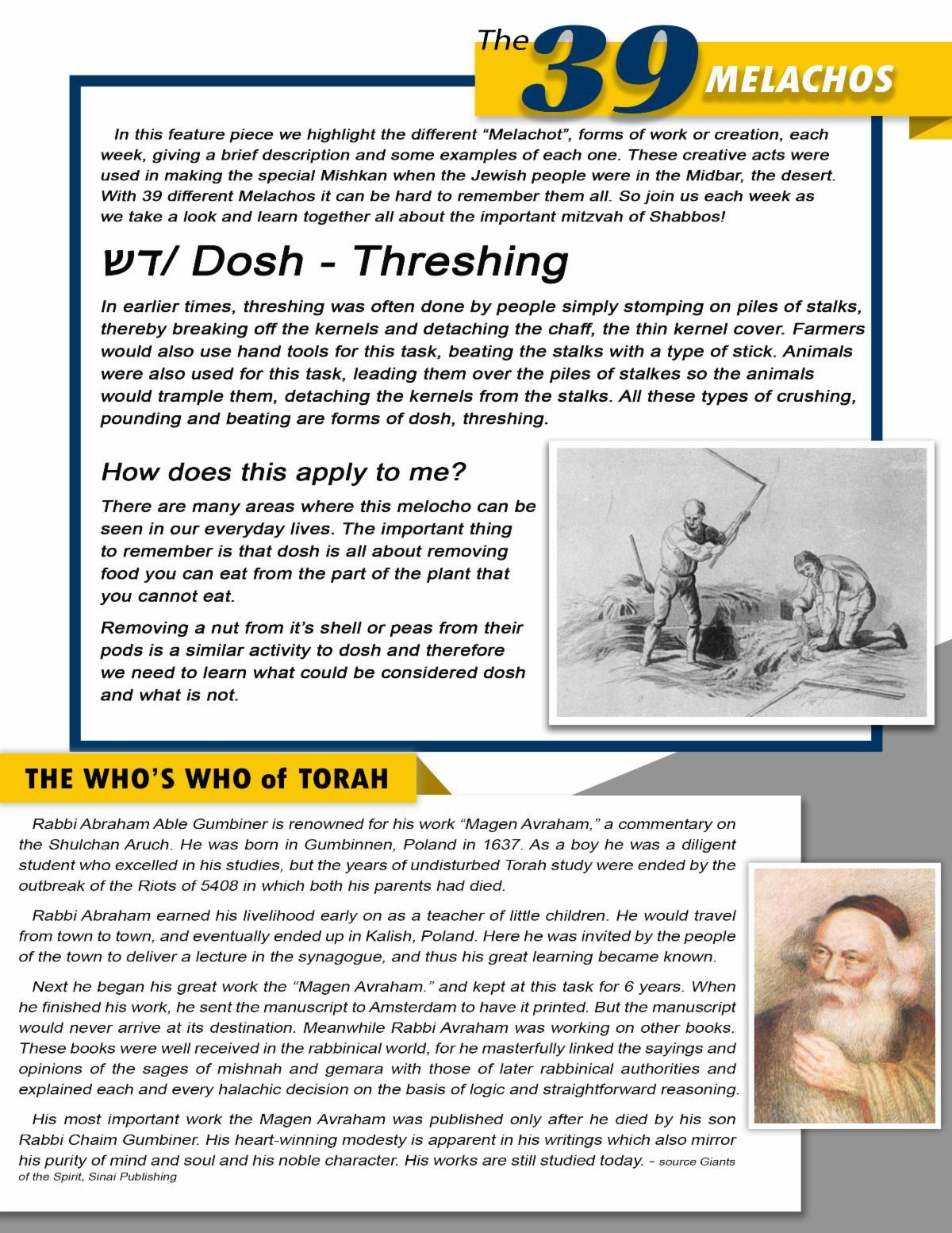 Hillel Happenings Story Page .jpg