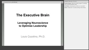 The Executive Brain with Dr. Lou Cozolino
