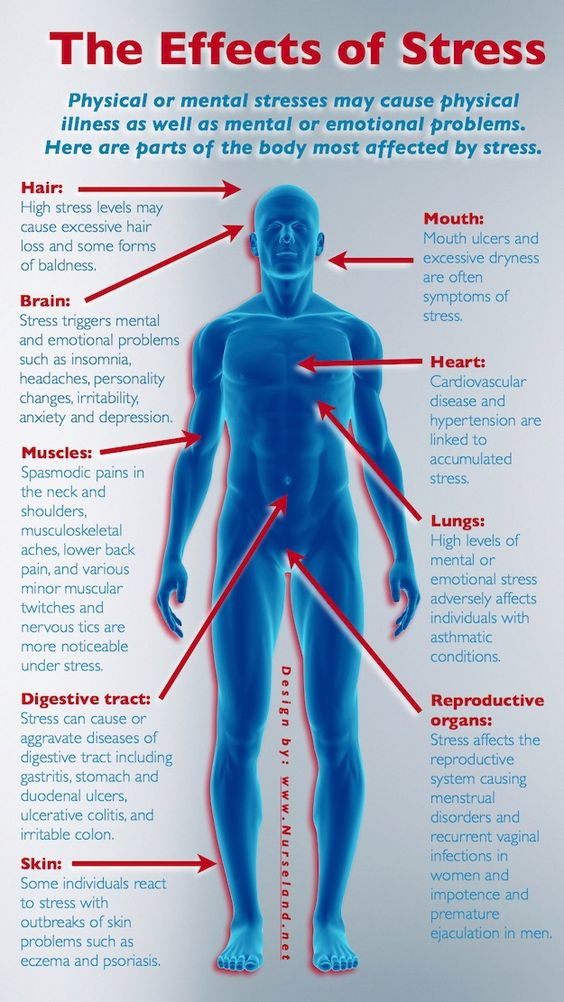 The Effects Of Stress On Your Body In Harmony
