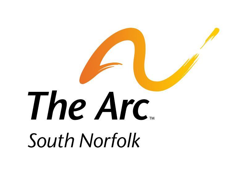 The Arc of SN Logo