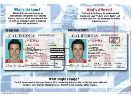 California drivers license issue date in Perth