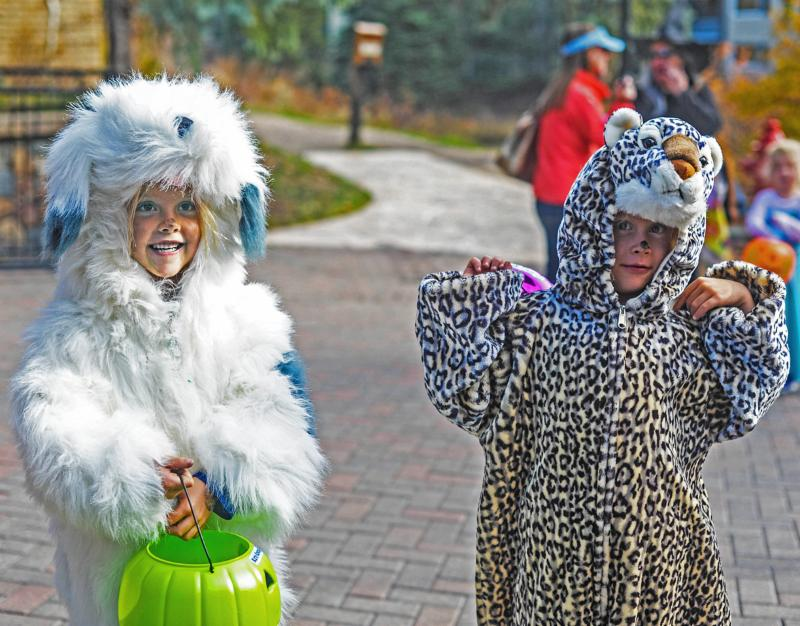 Vail Trick or Treat Trot for Halloween