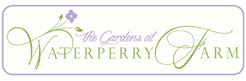 Waterperry new