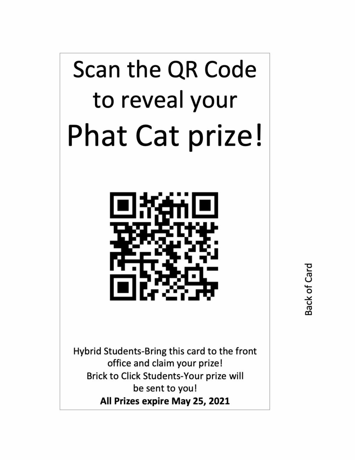 Phat Cat Pandemic Edition1.jpg