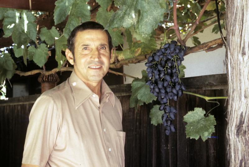 Petrucci 1970's