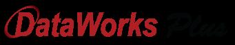DataWorks Plus Logo (horizontal)
