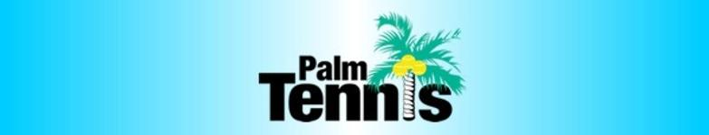 Palm tennis smaller header