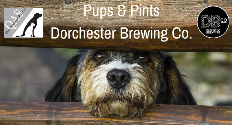 Quincy Animal Shelter Pups & Pints event
