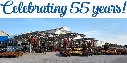 Celebrating55-pic.jpg